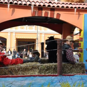 Carnevale 2012 6